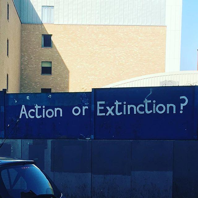 #dalston #extinctionrebellion #rebelforlife