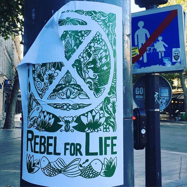 #rebelforlife @extinctionrebellion #paris 💕💚