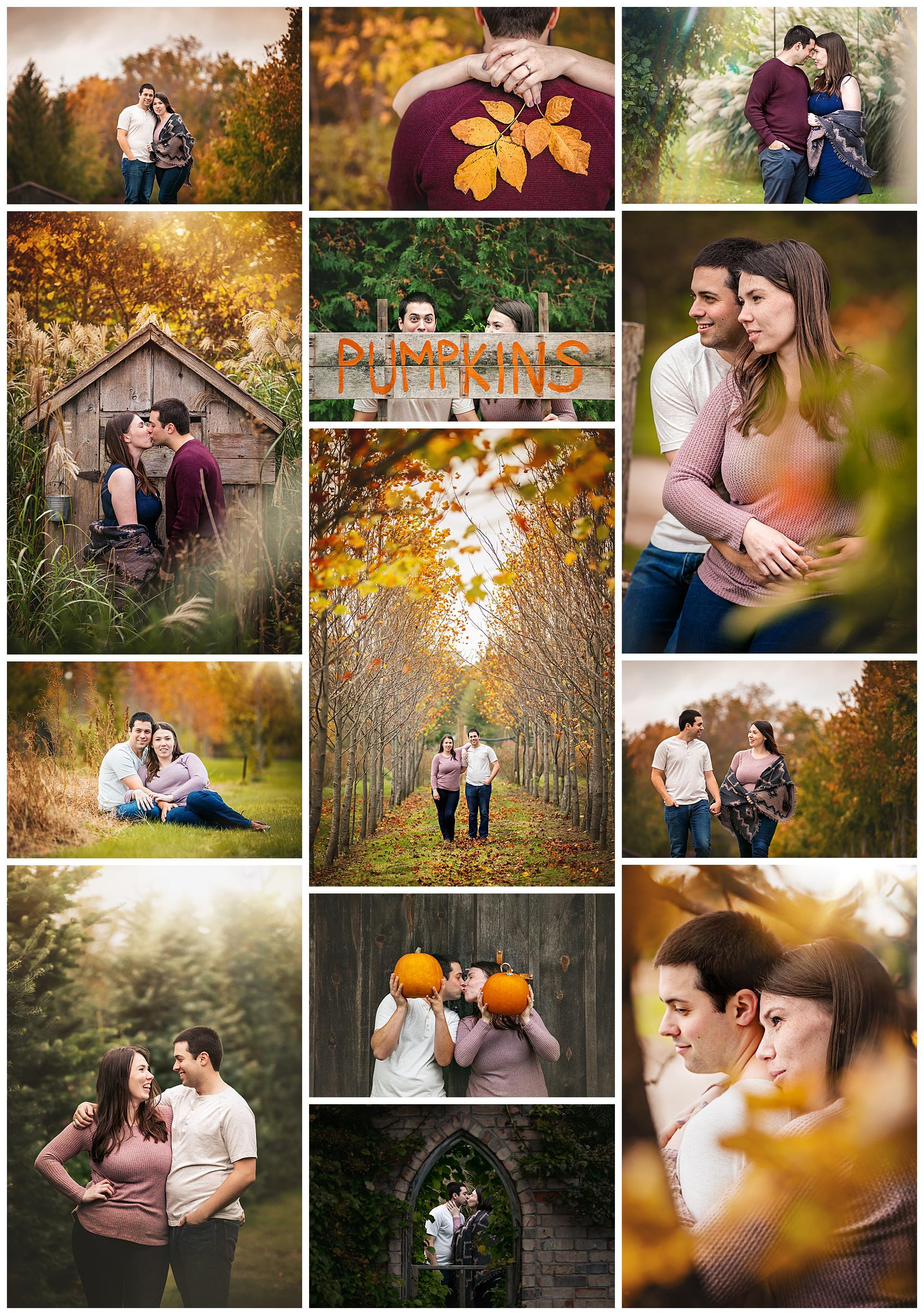Arrowwood Farm, Melbourne, Ontario engagement photos by VanDaele & Russell