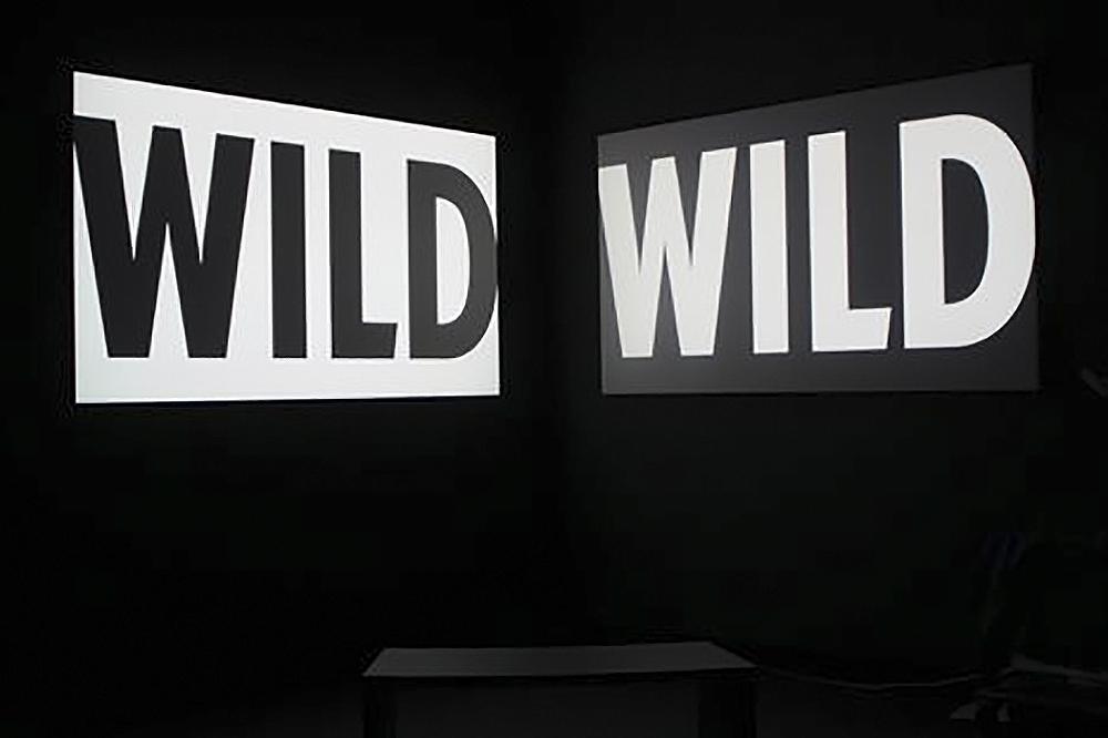 Cailleau_Wild Wild_Still 1.jpg