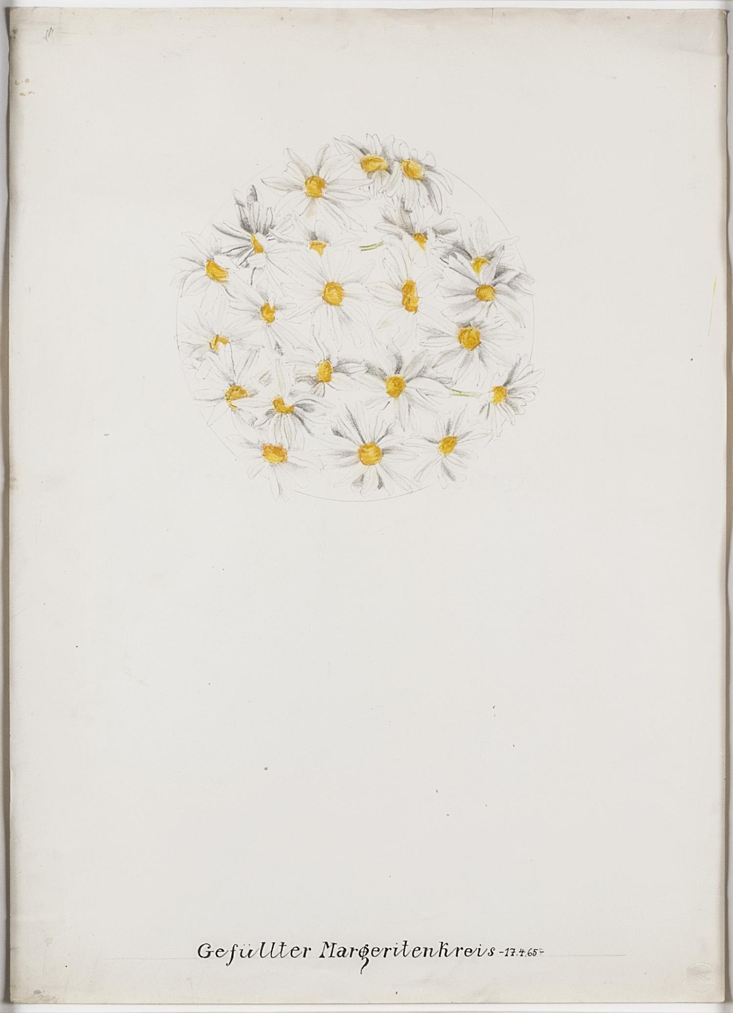 Gefüllter Margeritenkreis   1965   Bleistift und Tusche auf Karton   62 x 44,5 cm