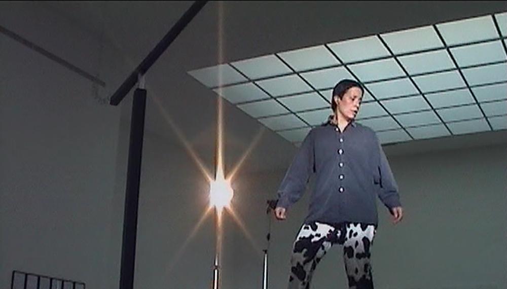 TANZEN IN DER SECESSION | 2006 | VIDEO | 85 MIN