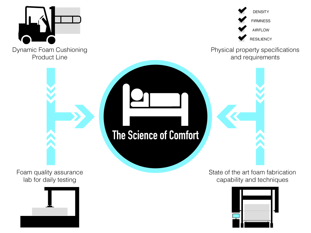 Science-of-Comfort-Infographic.png