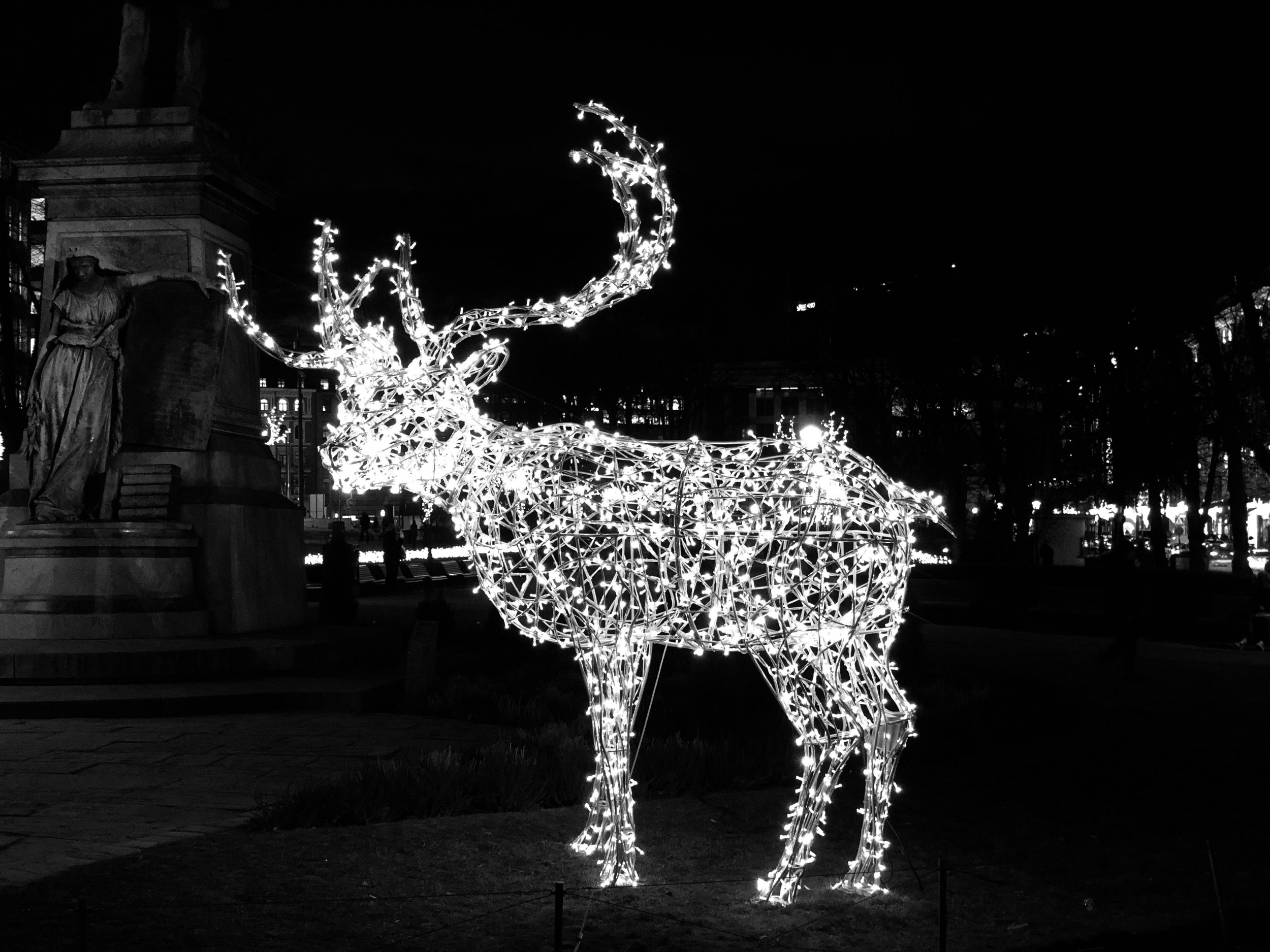Finland - Reindeer in the city! In December, the urban park, Esplanadi - or Espa as the locals call it - is beautifully decorated and illuminated for the holiday season. The Esplanadi is the heart of the city and where you will find plenty of shops and nice restaurants.Photo by Miriam Bourin/Global Local Traveler