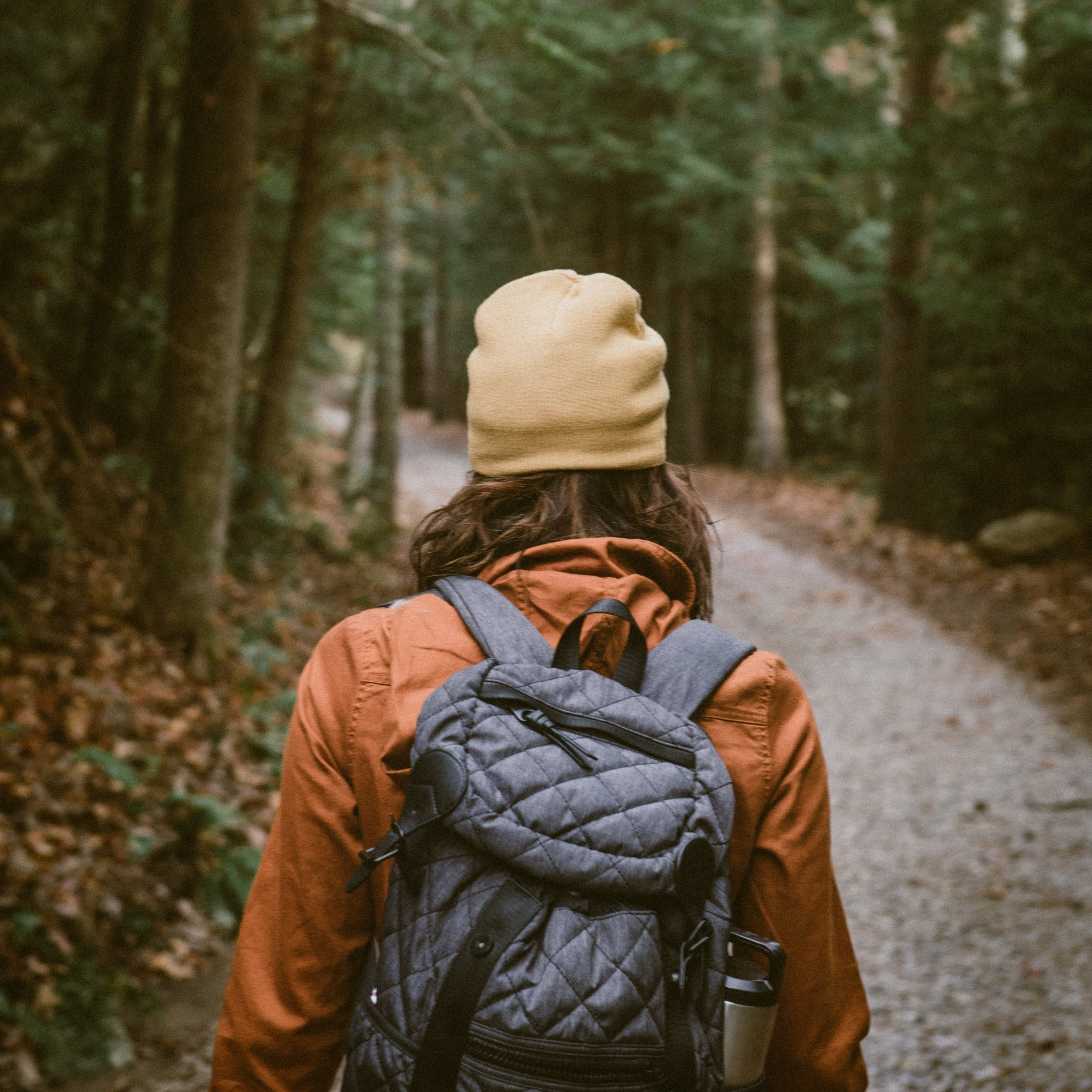 A walk in nature help us switch off, reflect and alleviate the symptoms of stress and low mood