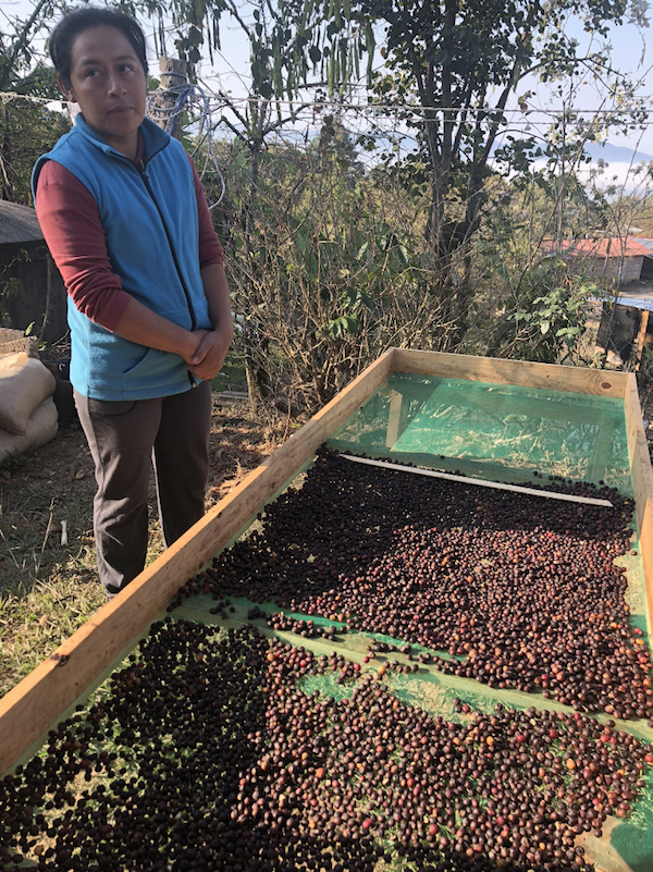 Concepcion Garcia with one of her raised beds at Finca Nuite, Cooperative Sierra Mixteca, Oaxaca, Mexico 2018