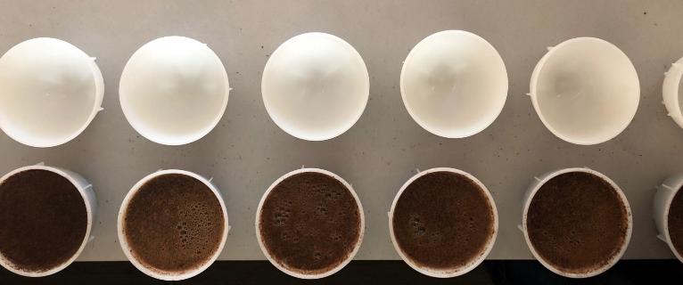 Cupping Bowls ready for wet aroma evaluation