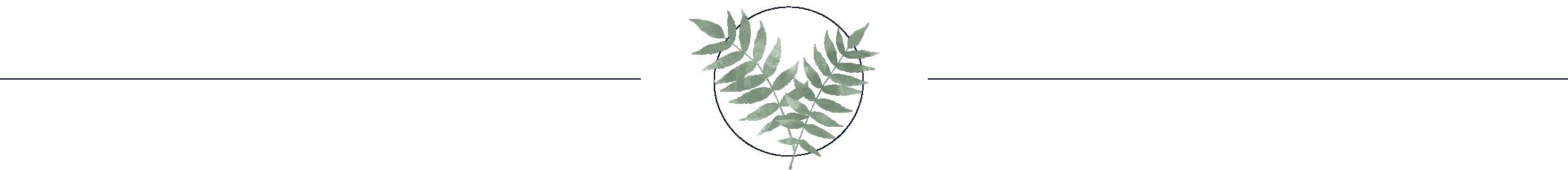 BC-leaves-divider