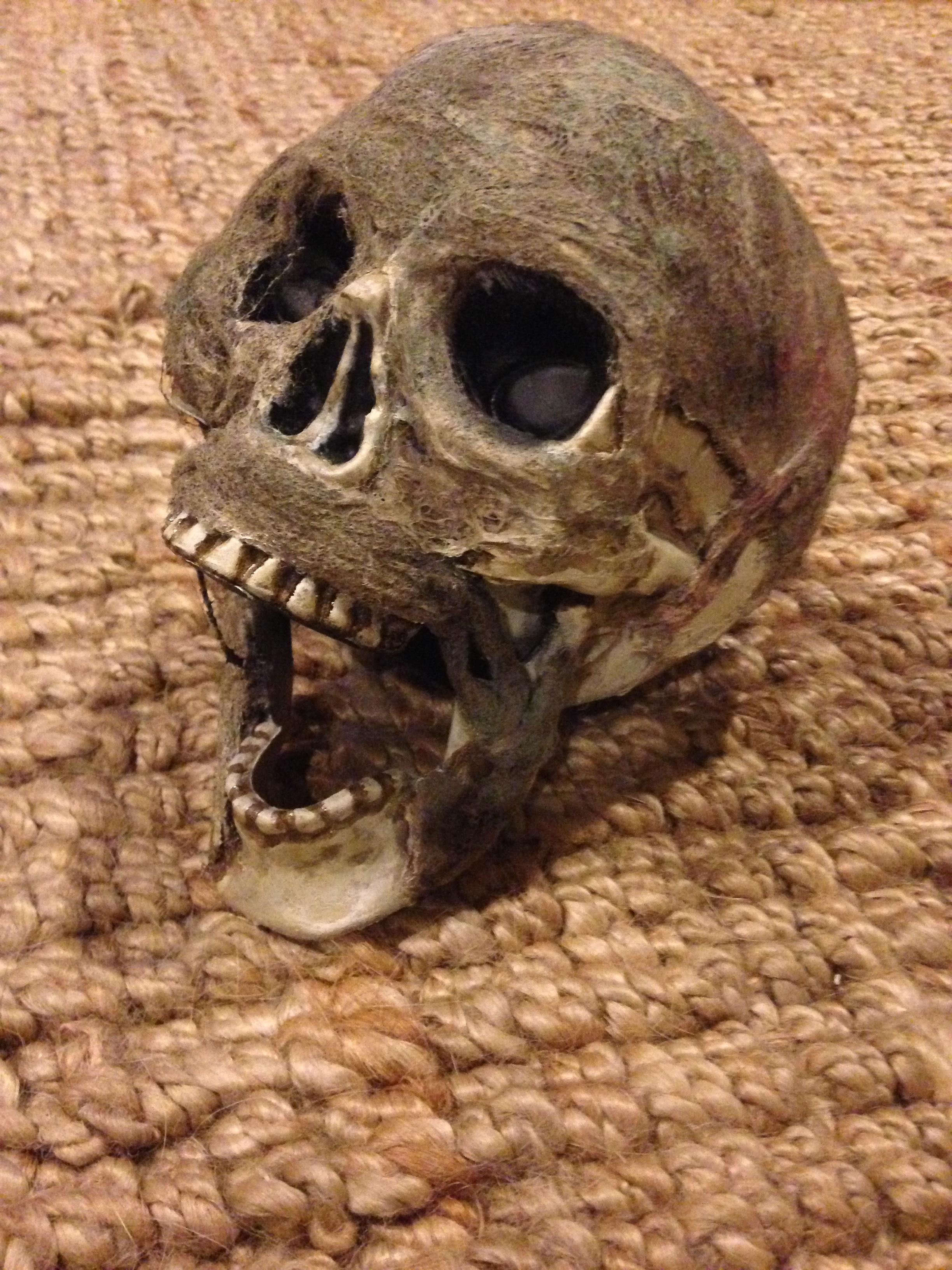 Skull_kean_keaneggett_halloween_rotted