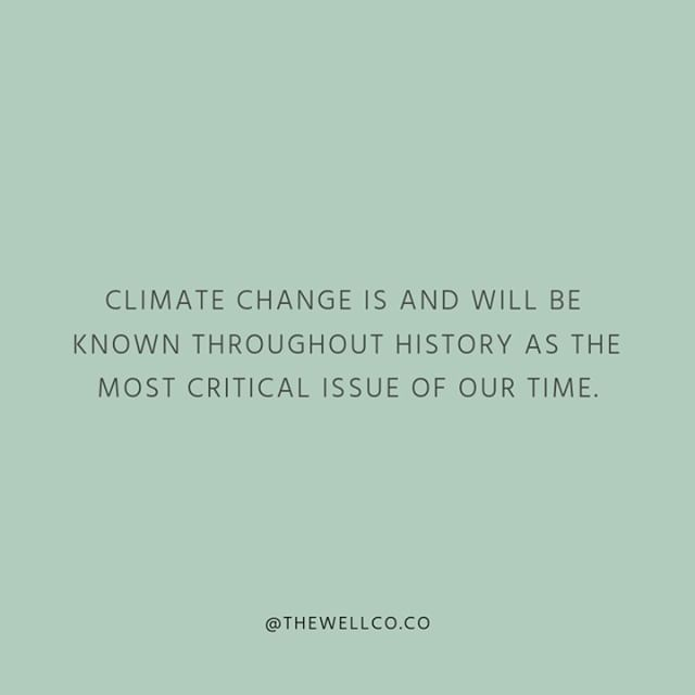 We need to stop viewing climate change as just an environmental issue and start viewing it as the greatest issue that will impact the future of our global health. #thewellimpact . . . #healthequity #globalhealth #climateadvocacy #sustainability #publichealth #nphw