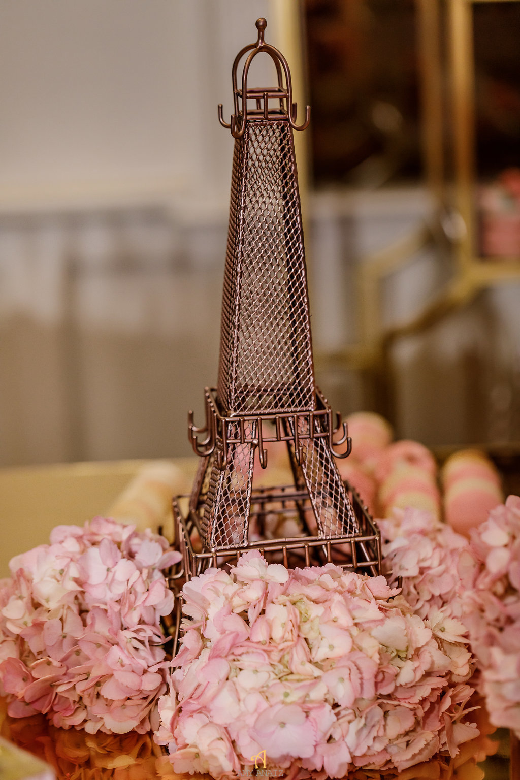 Parisian Theme Sweet Sixteen (13).jpg
