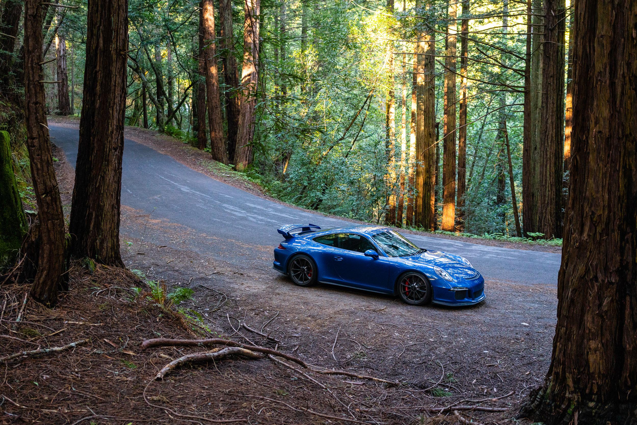 porsche-911-gt3-alpine-road-forest.jpg