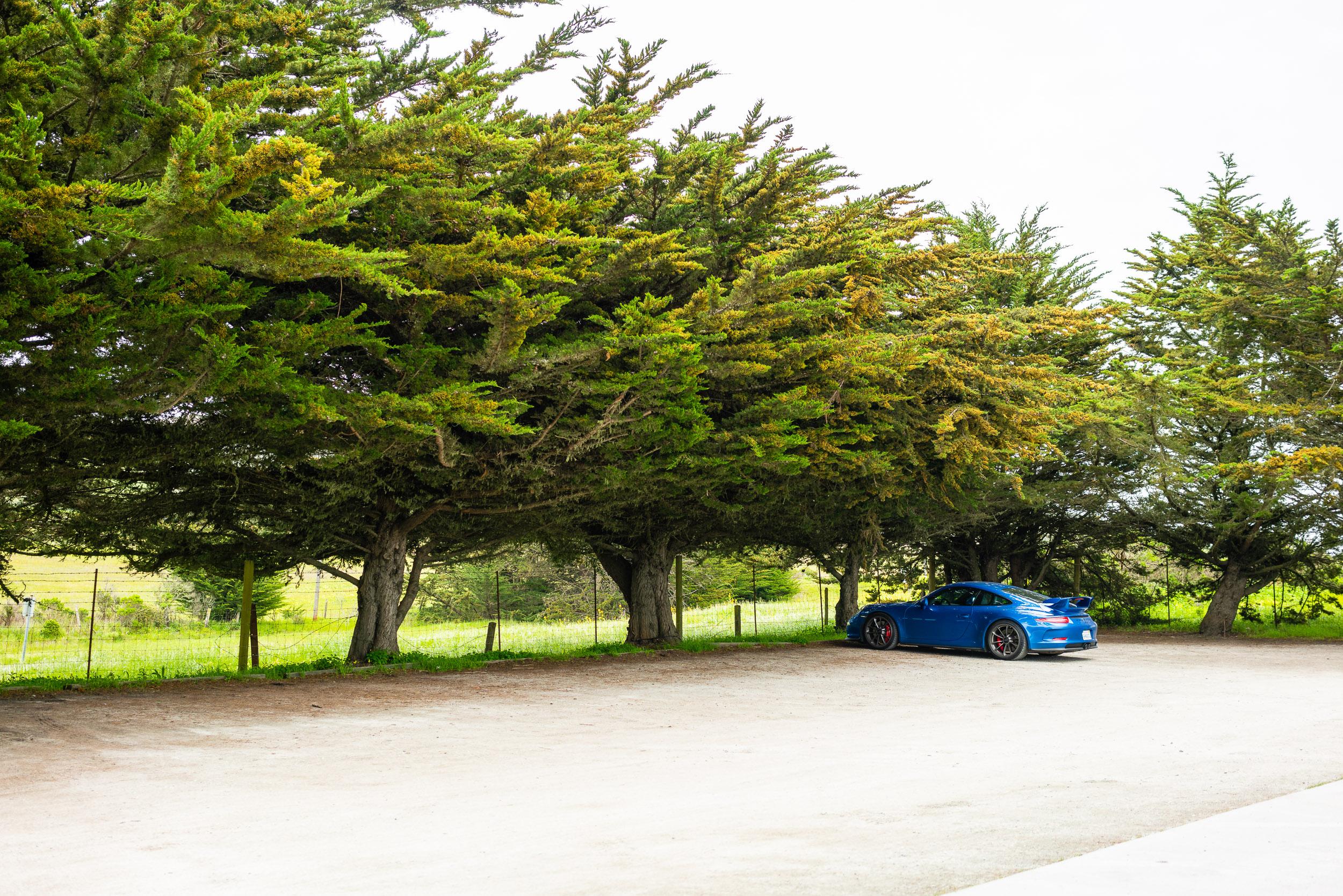 porsche-911-gt3-parked-grove.jpg