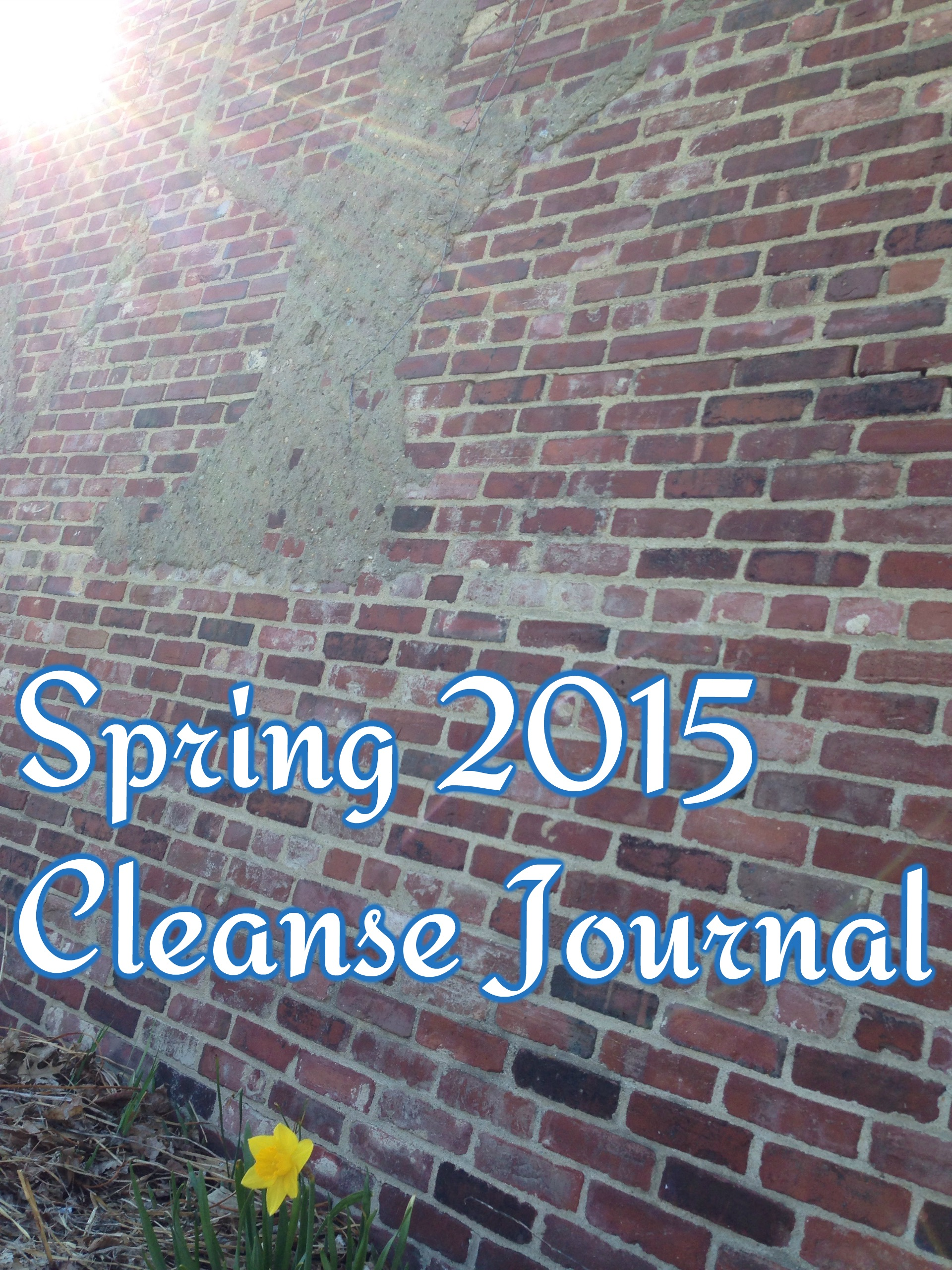 2015 Spring Cleanse