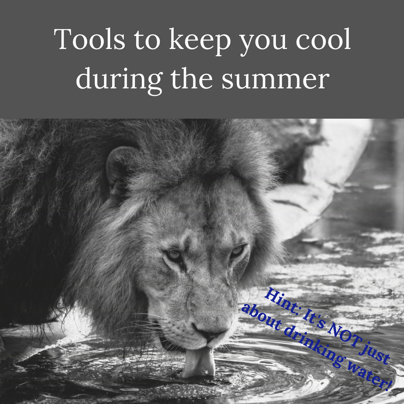 Tools to keep you cool during the summer.png