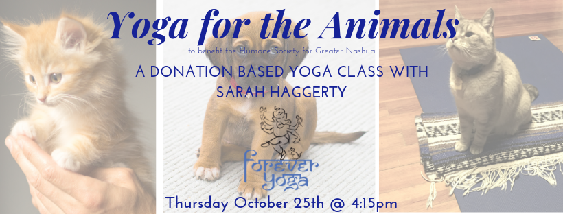 Yoga for the Animals.png