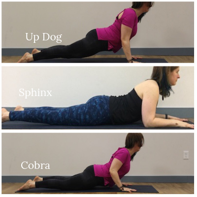 essential differences in 3 common backbends — forever yoga