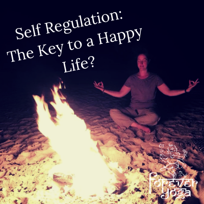 Self Regulation_ The Key to a Happy Life?.png