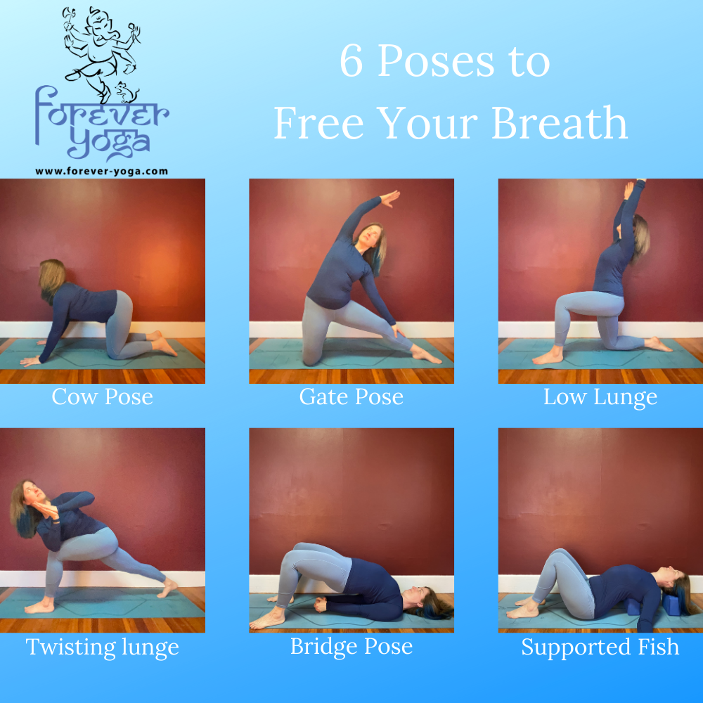 50 poses to free the breath — Forever Yoga