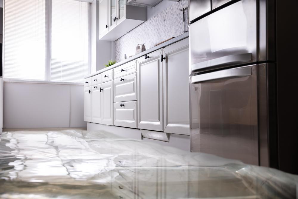 Kitchen Water Damage
