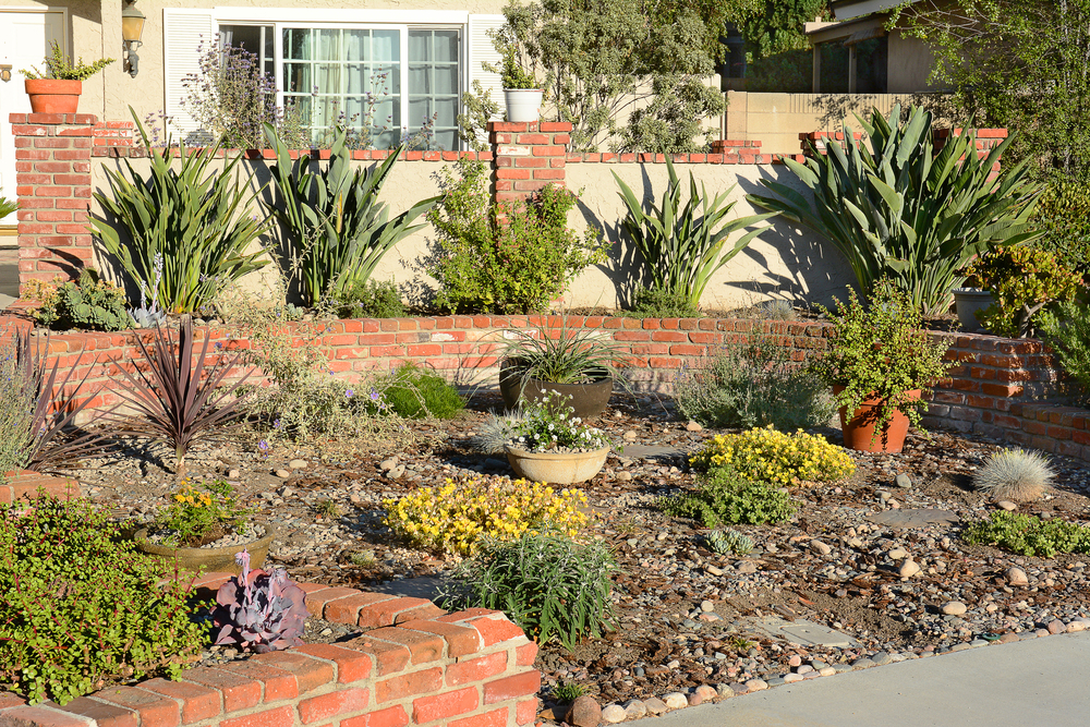 drought landscaping huntington beach, ca