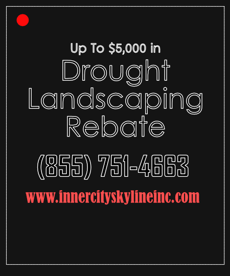 Drought Landscaping Rebate