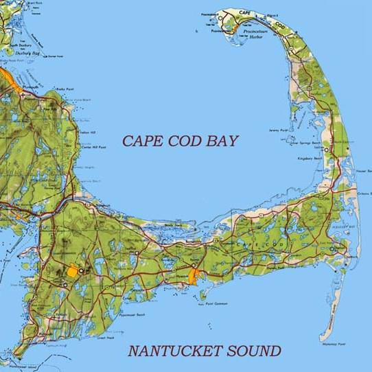 cape cod wood-cropped.jpg