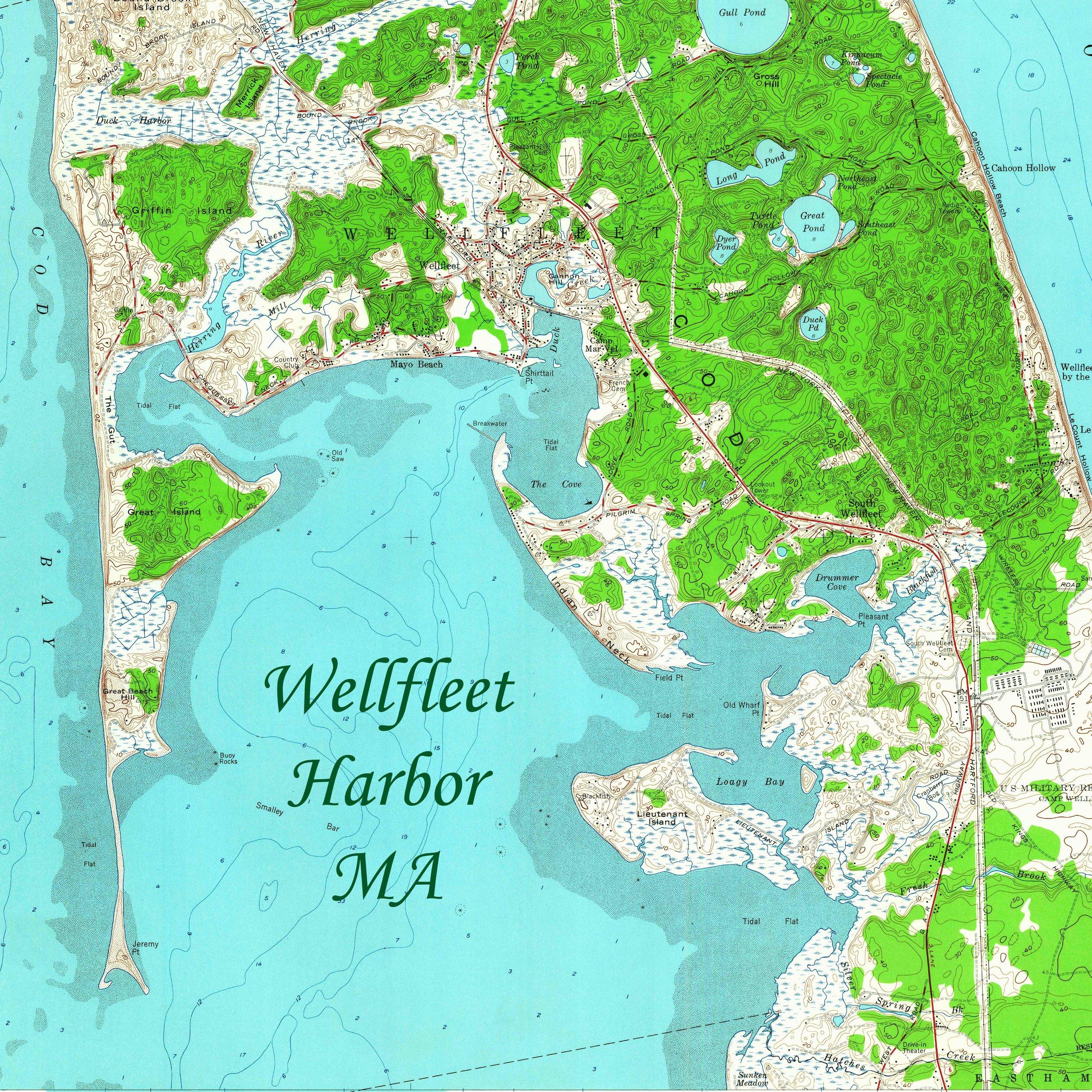 wellfleet square.jpg
