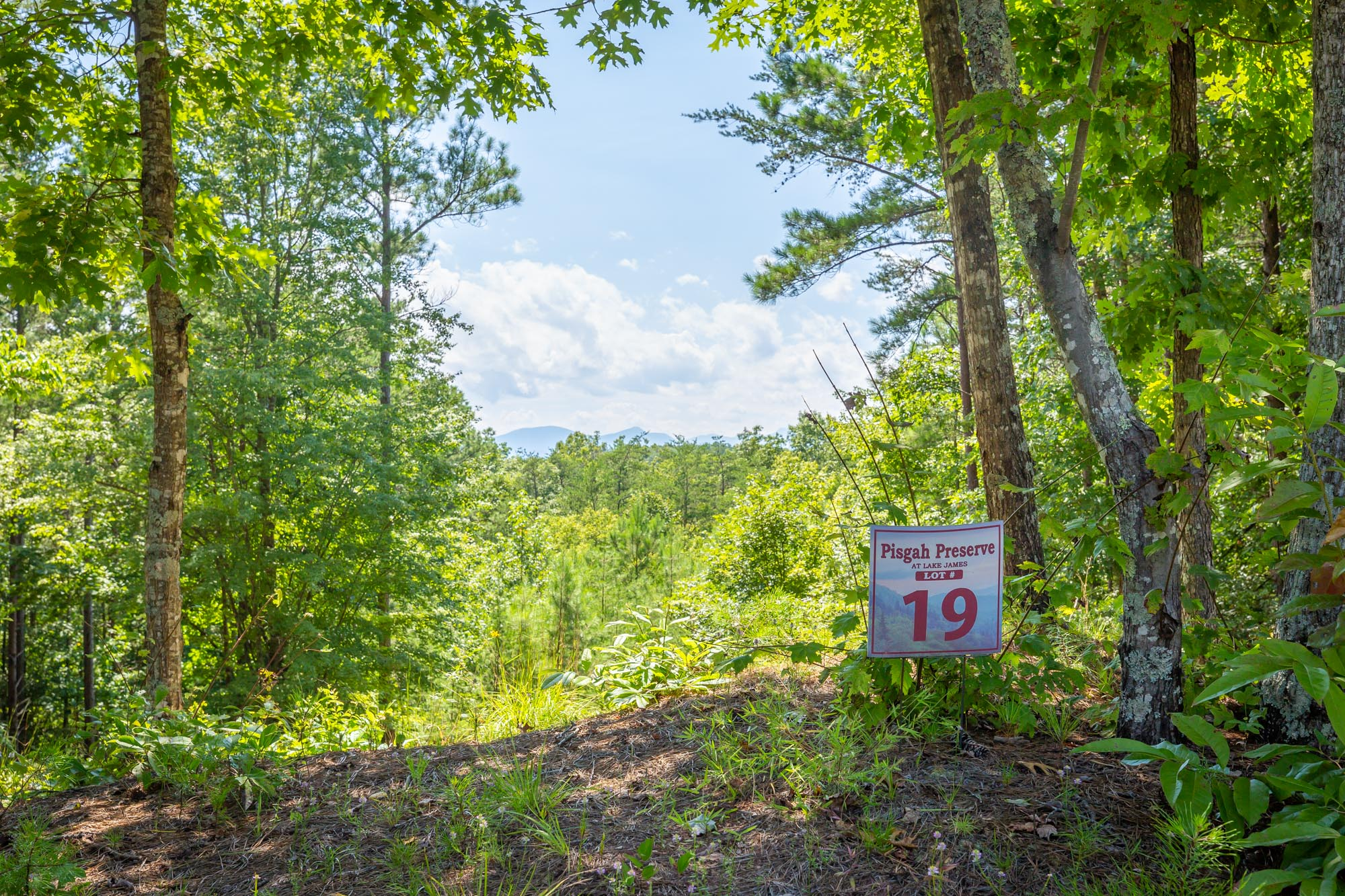 Pisgah Preserve Lot 19.jpg