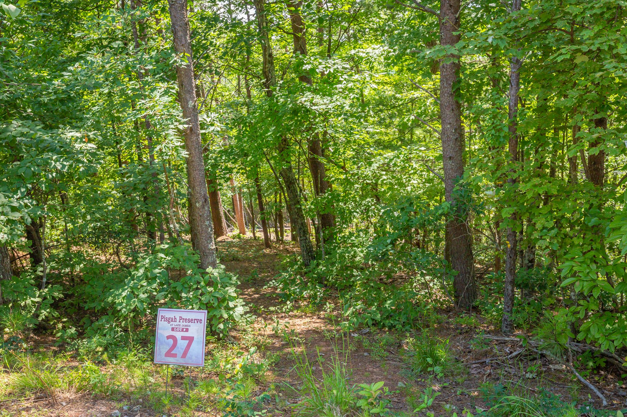 Pisgah Preserve Lot 27.jpg