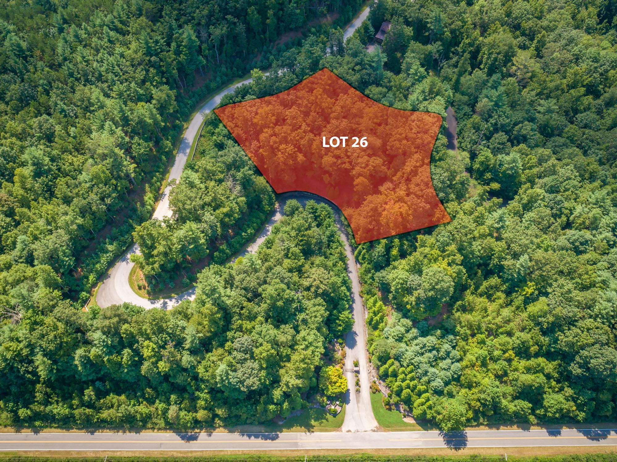 Pisgah Preserve Lot 26-6.jpg