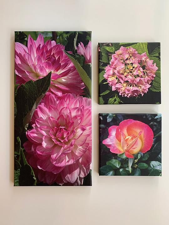 Floral group 2.jpg