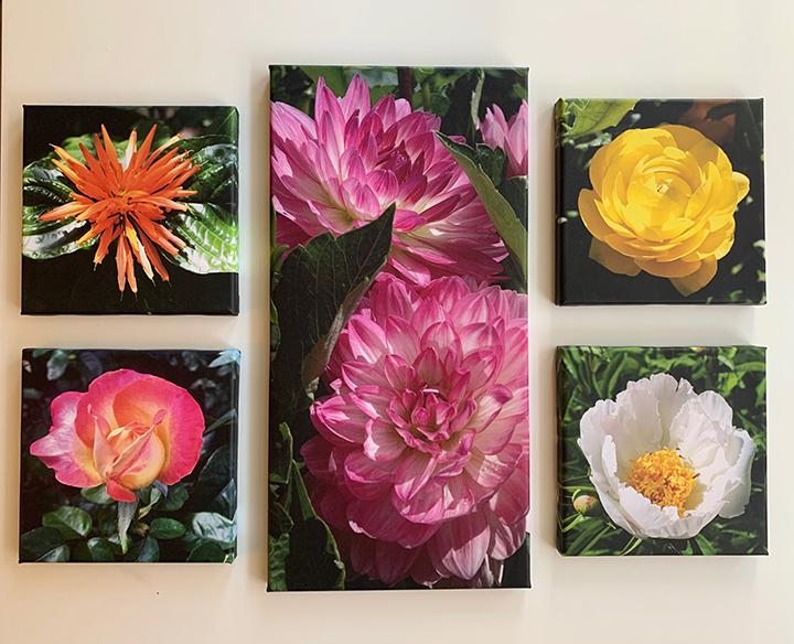 Floral group 3.jpg