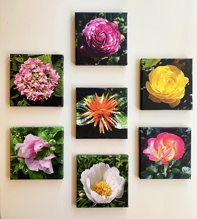 Floral group 5.jpg