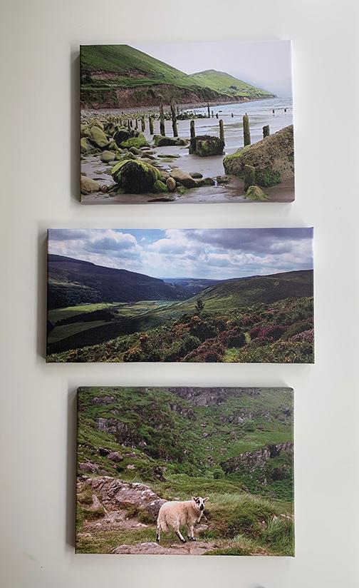 Landscape ireland group.jpg