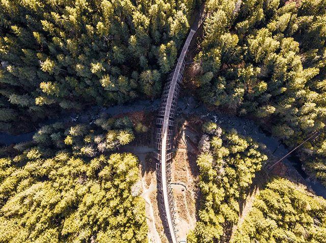 The beautiful Kinsol Trestle, British Columbia, Canada. - #canada #canadadestinations #bc #yyj #explorecanada #explore #views #beautiful #loveit #tbt #throwbackthursday #like4like #followme #earthbound #happy #travel #photography #photooftheday #picoftheday #bestoftheday #photoshoot #photographerslife #pictureoftheday #picofday #beautifull #love