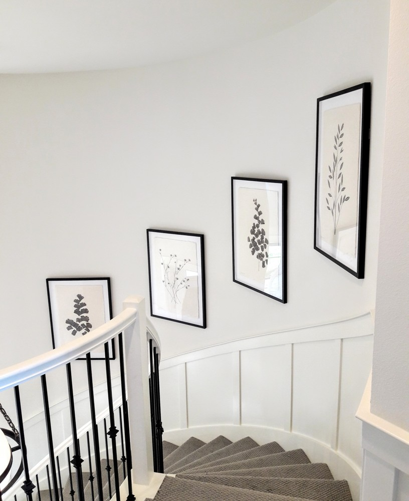 Curved Staircase Sets the Stage For Elegant Botanical Artwork - An interior designer chose these beautiful leafy prints for this curved staircase in a new home. We installed them at an appropriate height and spacing to be enjoyed from different vantage points. Hanging artwork is an art in itself!