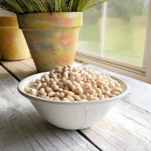Navy beans.jpeg