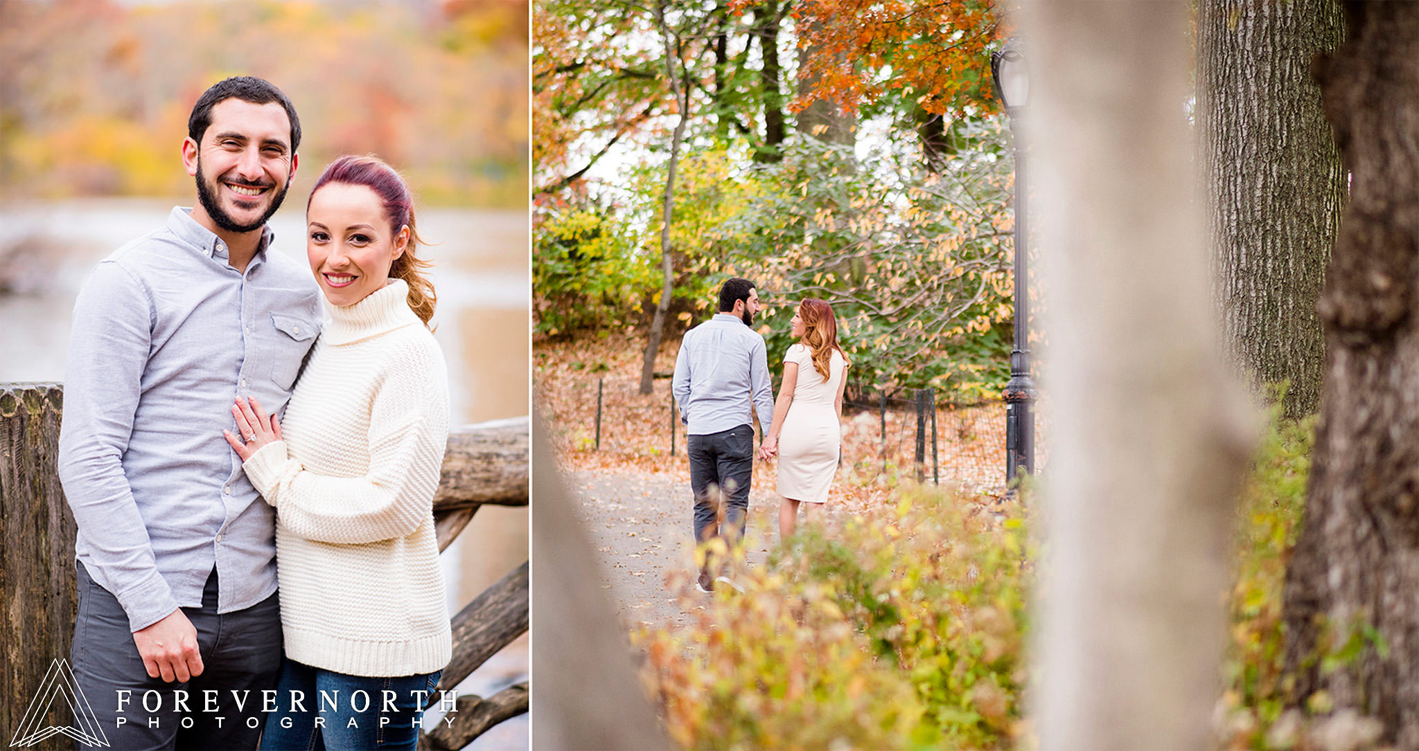 Giangrande-Central-Park-New-York-Engagement-Photos-02.JPG