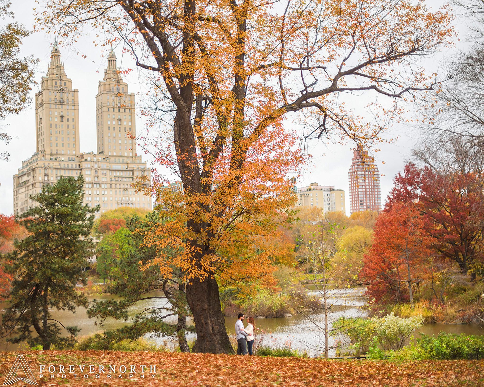 Giangrande-Central-Park-New-York-Engagement-Photos-10.JPG