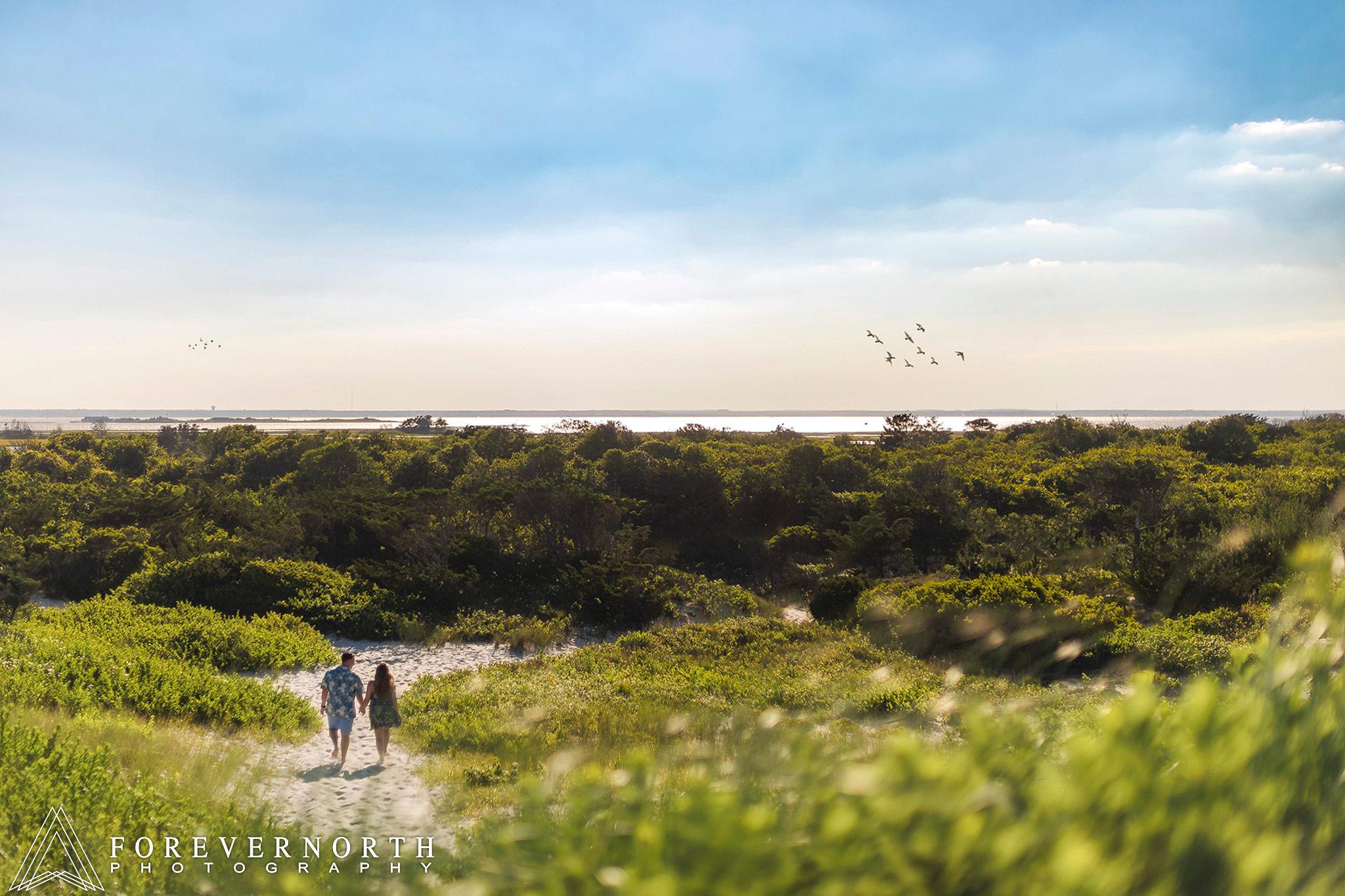 Chiaia-Island-Beach-State-Park-Engagement-Photos-25.JPG