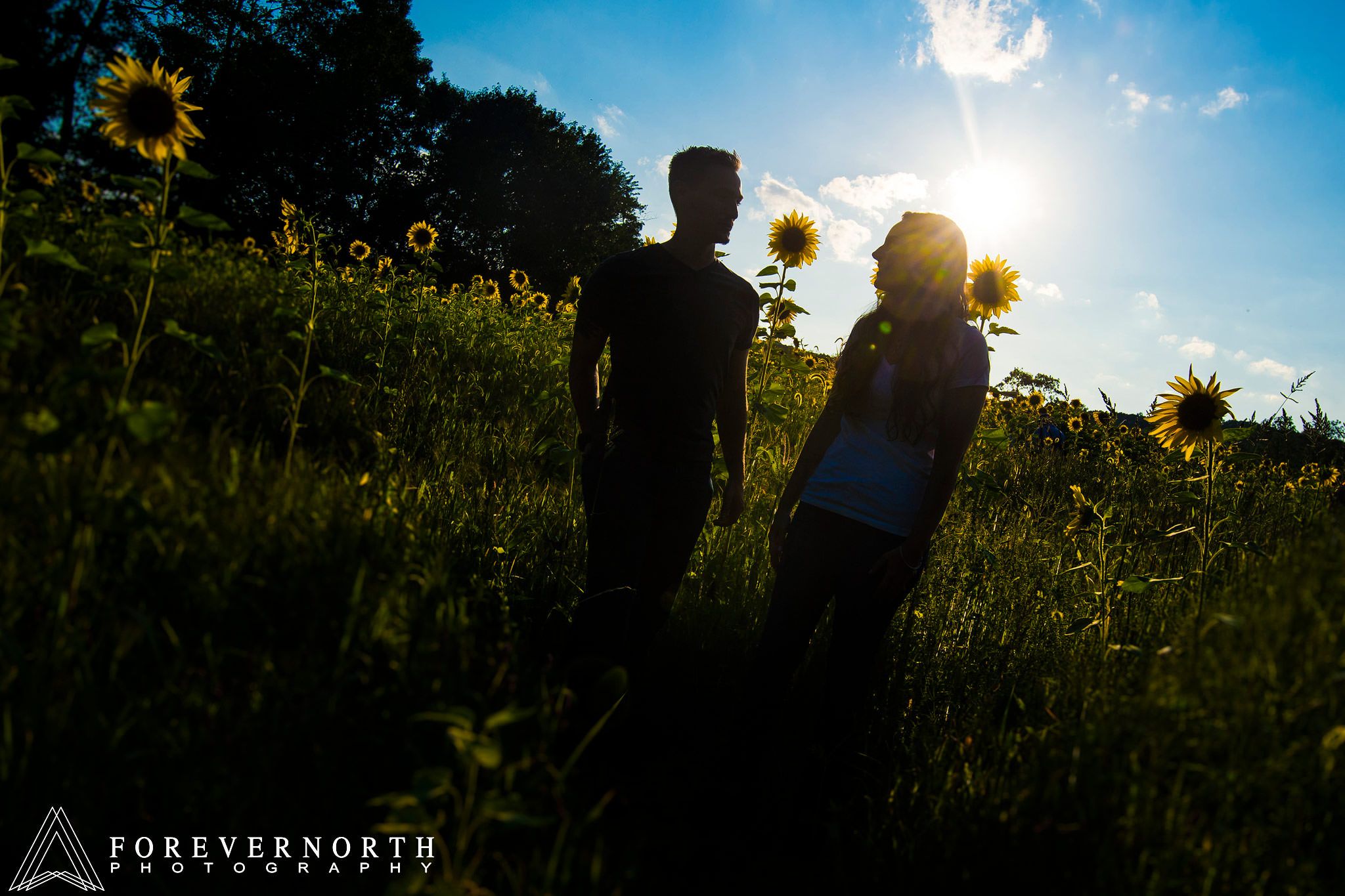 Ennis-Sussex-Sunflower-Maze-Engagement-Photos-05.JPG