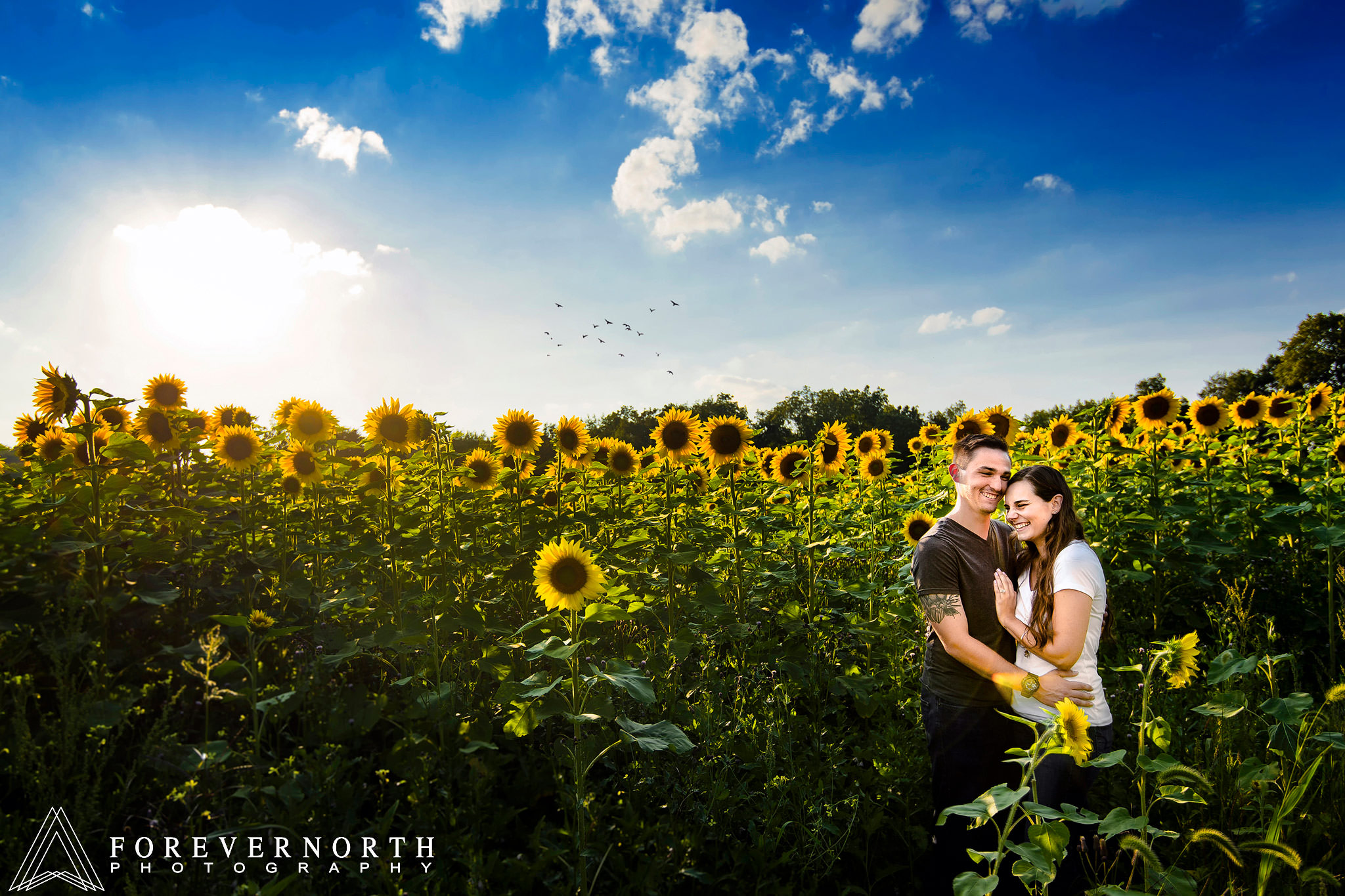 Ennis-Sussex-Sunflower-Maze-Engagement-Photos-06.JPG