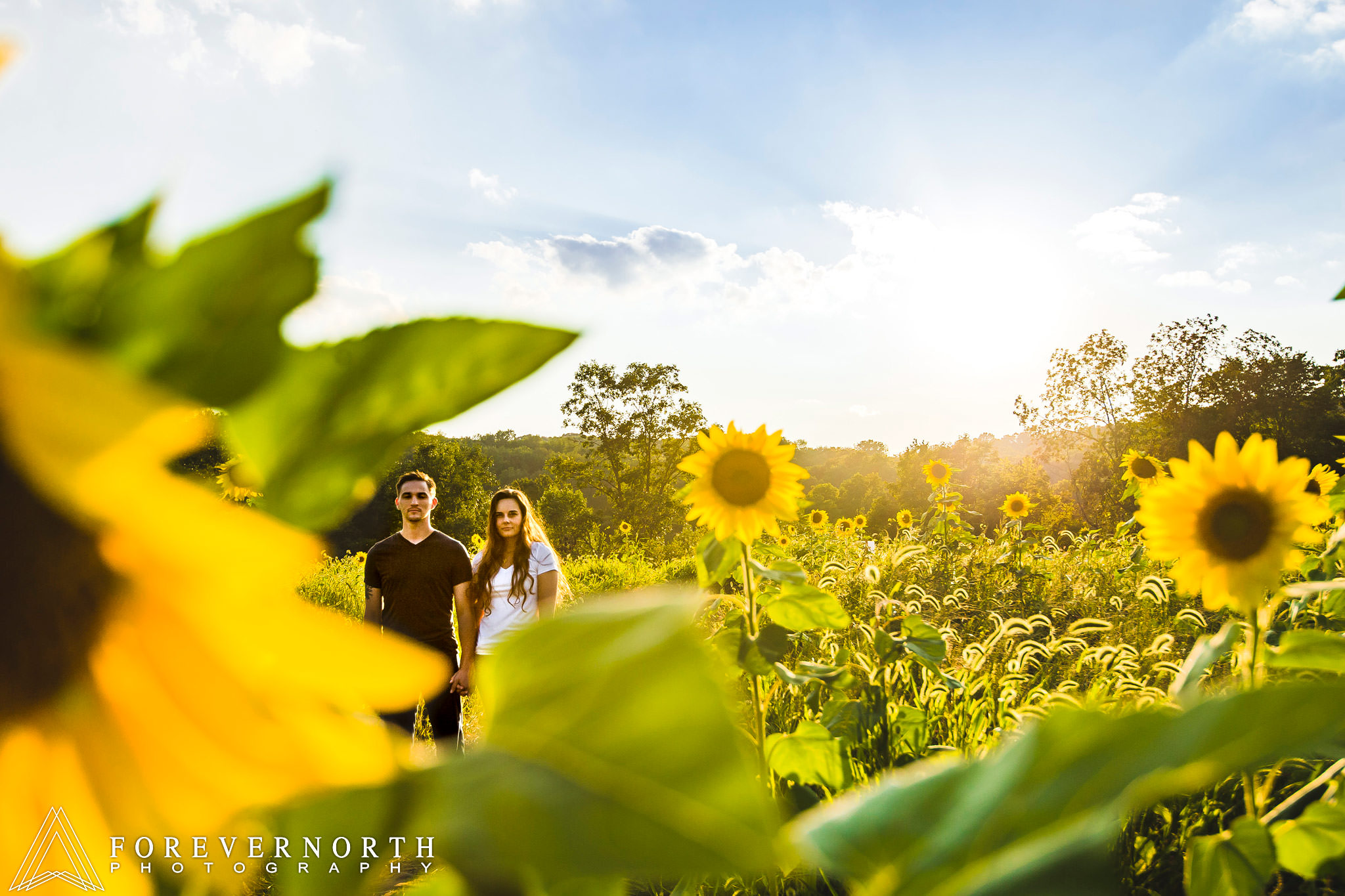 Ennis-Sussex-Sunflower-Maze-Engagement-Photos-09.JPG