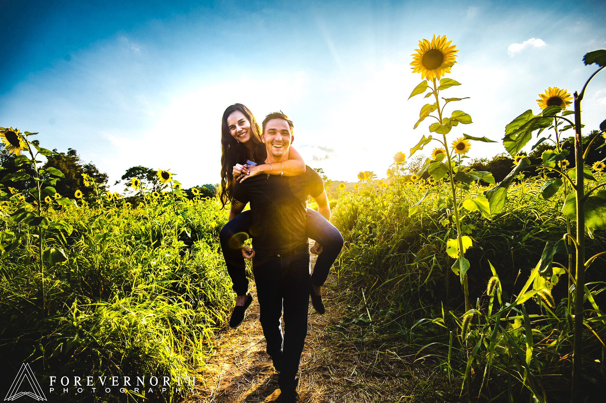 Ennis-Sussex-Sunflower-Maze-Engagement-Photos-08.JPG