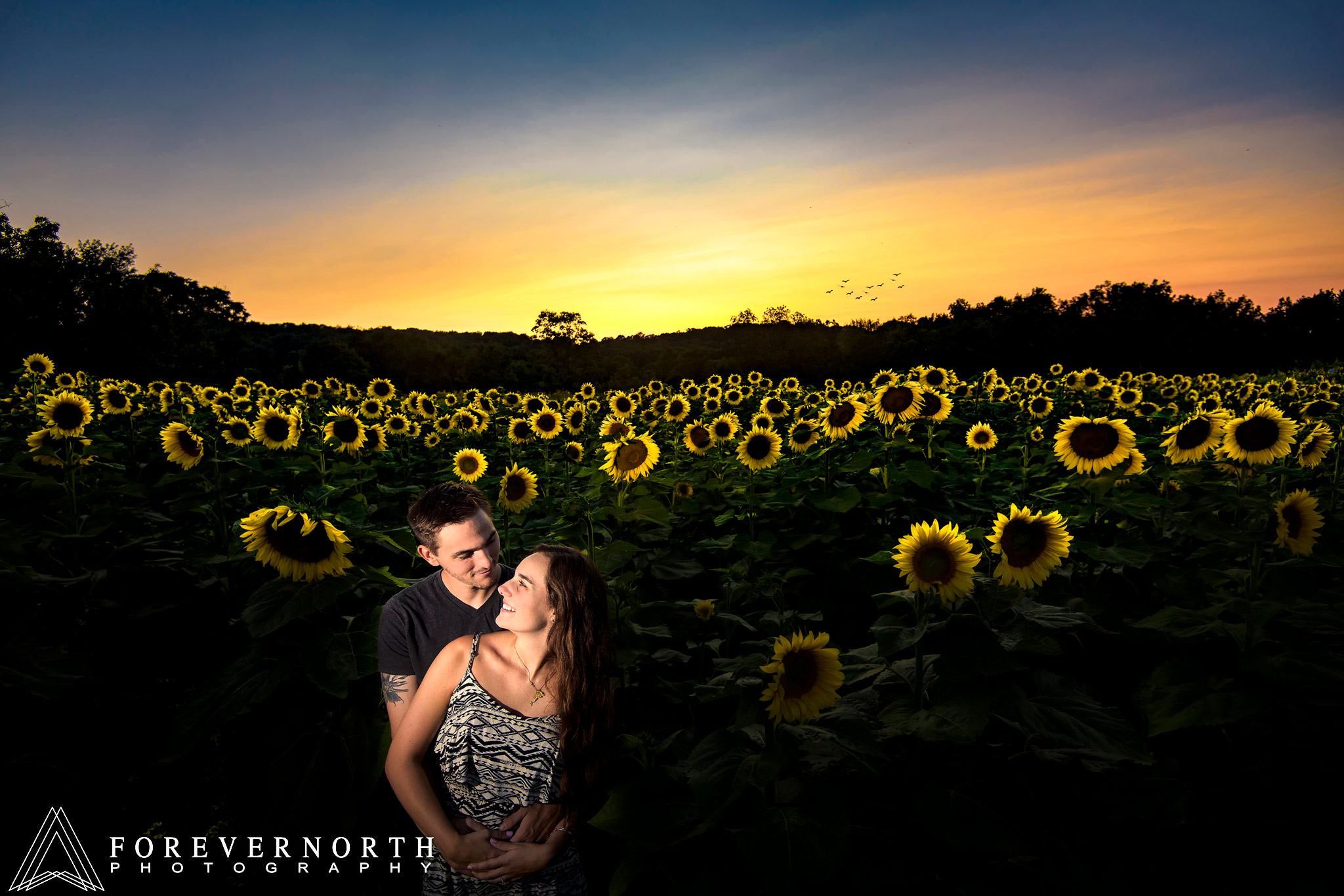 Ennis-Sussex-Sunflower-Maze-Engagement-Photos-13.JPG