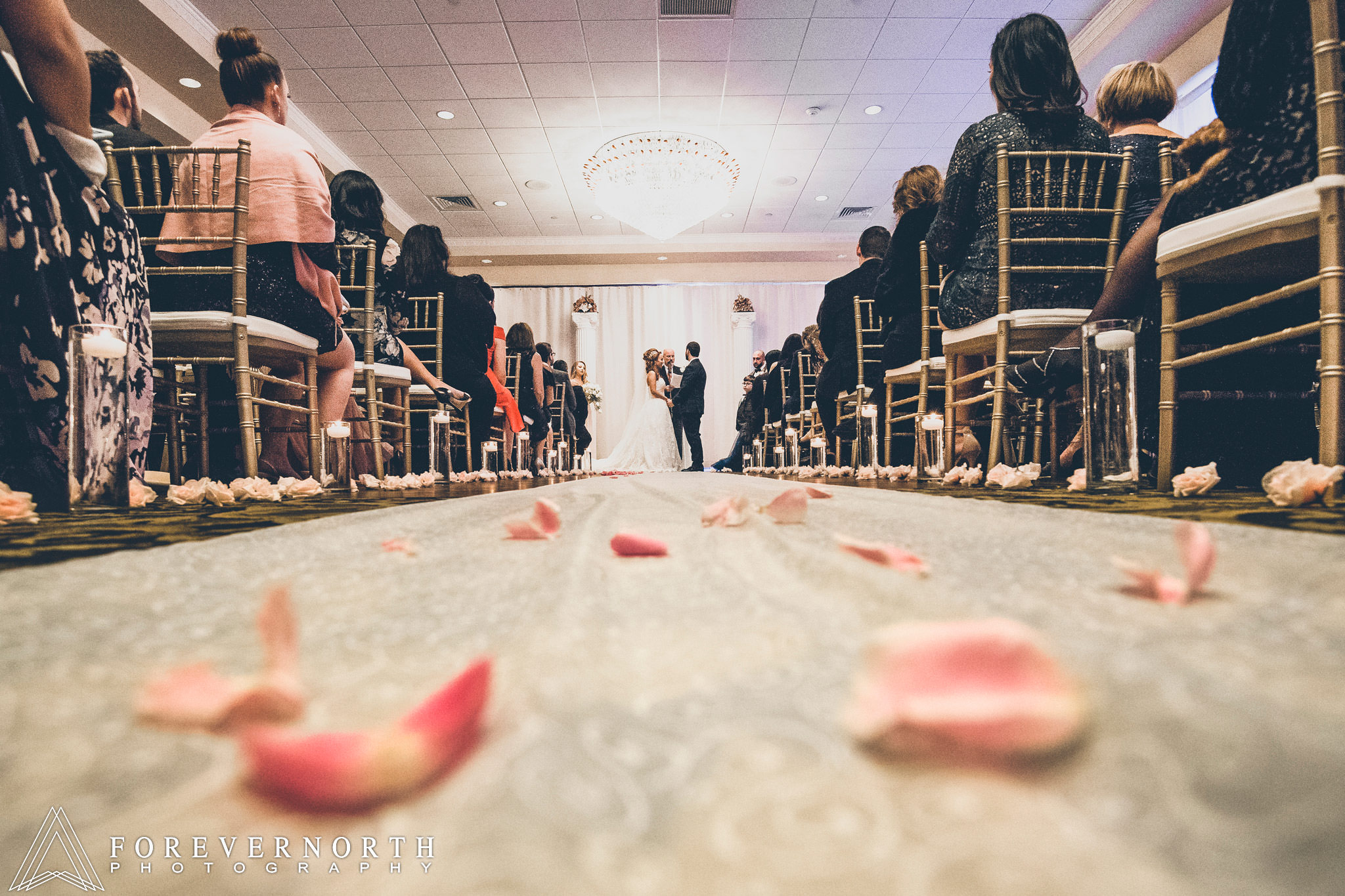 Giangrande-Ramada-Inn-Wedding-Photographer-27.JPG