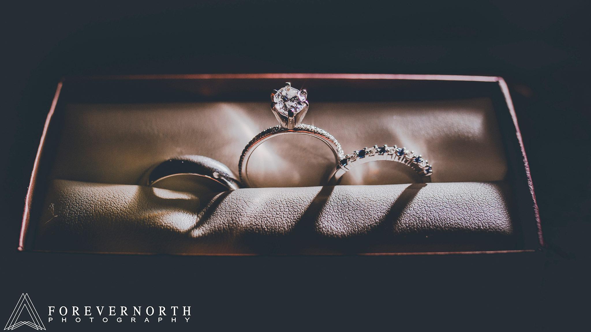 Brown-Allaire-State-Park-Wedding-Photographer-03.JPG