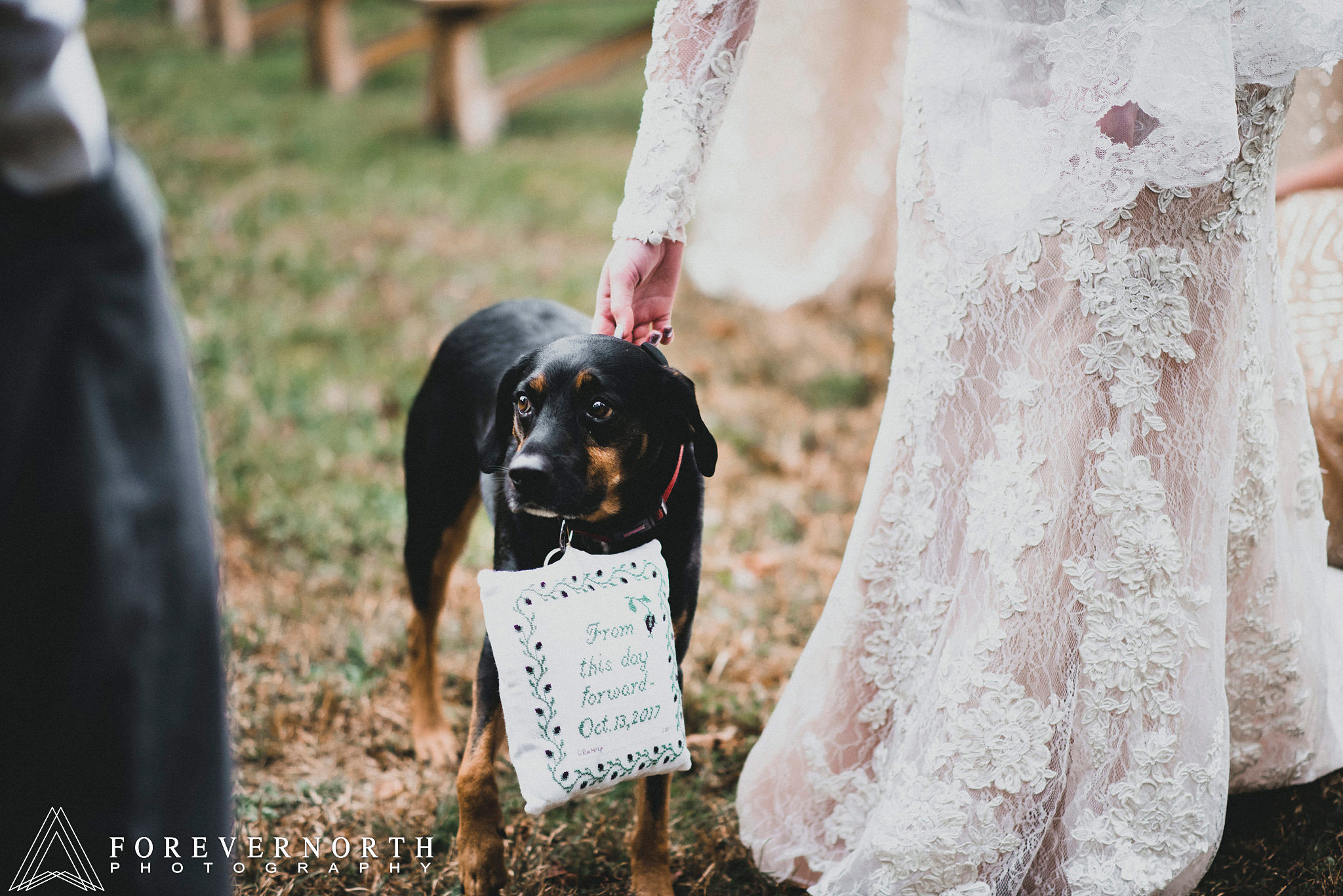 Perkins-Whitesbog-Village-Wedding-Photographer-17.JPG