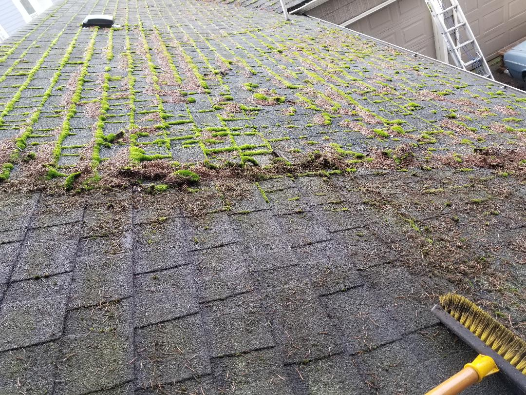 Roof Cleaning - Avoid costly repairs and annoying leaks, get that mossy green and debris taken off before they do serious damage. We keep the age and type of roof in mind when we offer you our roof cleaning services. We can power wash it off for newer stronger roofs or manually brush it off for more delicate and older roofs. Either way, the difference is outstandingly noticeable. Don't believe us? Check out our before and afters.